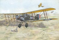 Bristol F.2B Fighter. 425 Roden 1:48