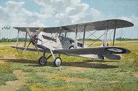 De Havilland D.H.4A пассажирский. 431 Roden 1:48