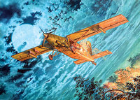 Fairchild AU-23A Peacemaker. 439 Roden 1:48