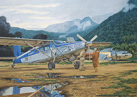 Pilatus PC-6 C/H2 Turbo-Porter. 440 Roden 1:48