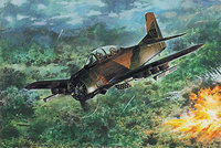 North American T-28D. 450 Roden 1:48