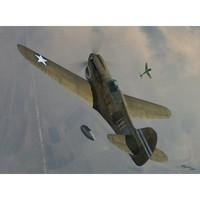 P-40K Warhawk истребитель. SW72063 Sword 1:72