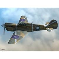 P-40K-10-15 Kittyhawk III истребитель-бомбардировщик. SW72065 Sword 1:72